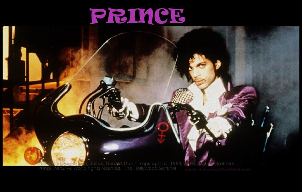 prince hollywood sentinel
